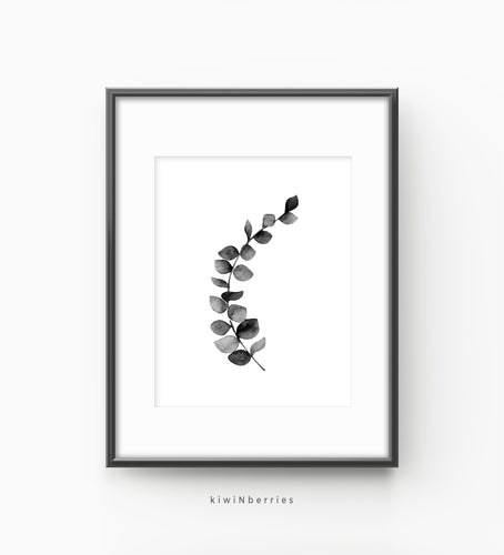 Eucalyptus monochrome leaf No.2