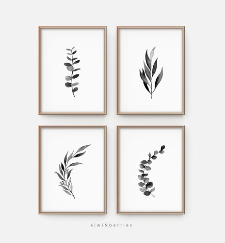 Eucalyptus Black and White - set of 4