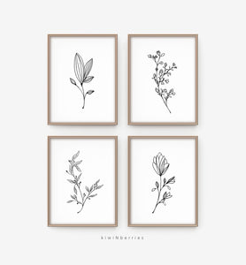 Pencil Botany - set of 4