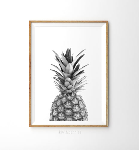 Pineapple Monochrome