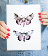 Load image into Gallery viewer, Moth No.2