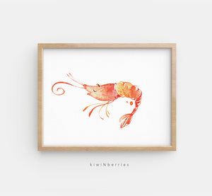Sea Shrimp