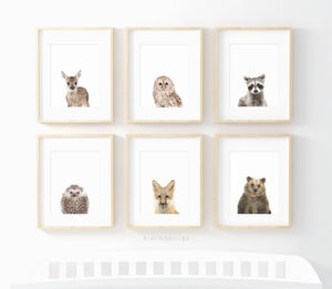 The Woodland Collection - set of 6