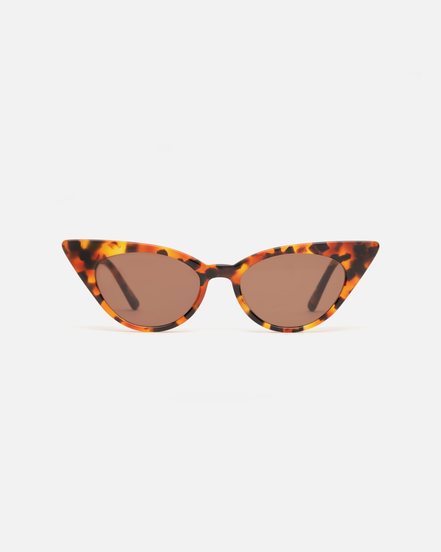 Lu Goldie Brigitte cat eye Sunglasses in tortoise shell acetate with brown lenses, front