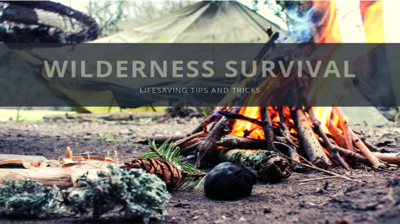 Wilderness Survival - Tips and Tricks