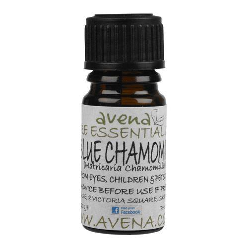 Chamomile German (Blue) Essential Oil (Matricaria chamomilla) - Evolved Flow