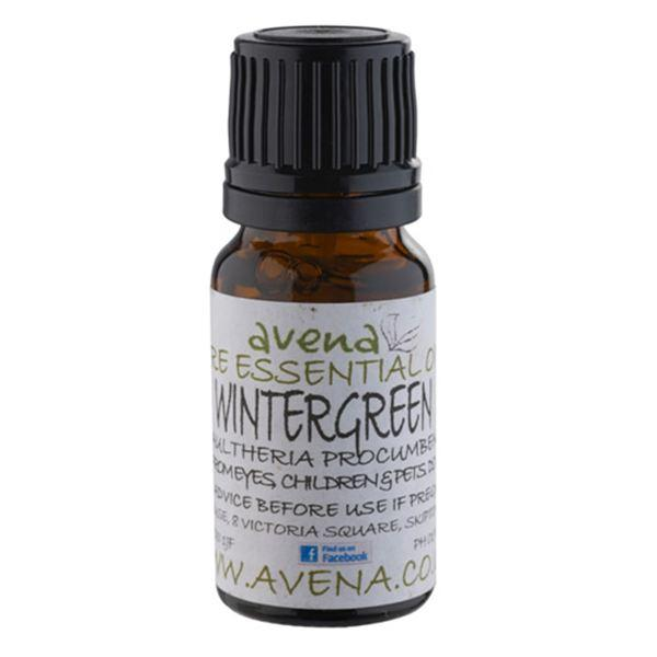 Wintergreen Essential Oil (Gaultheria procumbens) - Evolved Flow