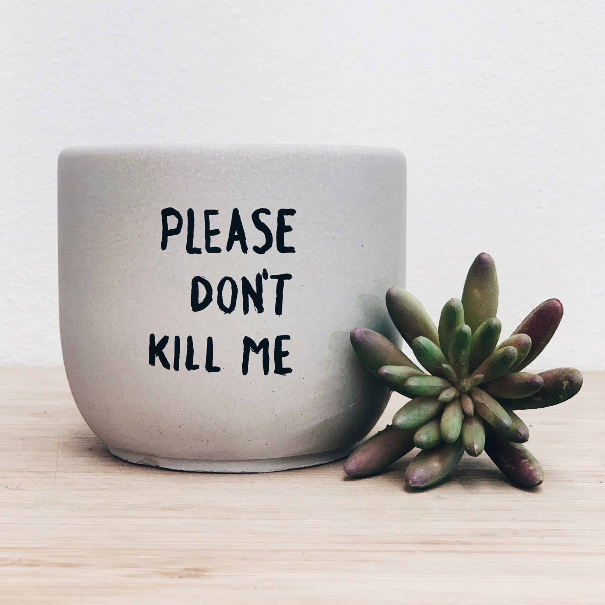 Pun Concrete Planter Medium