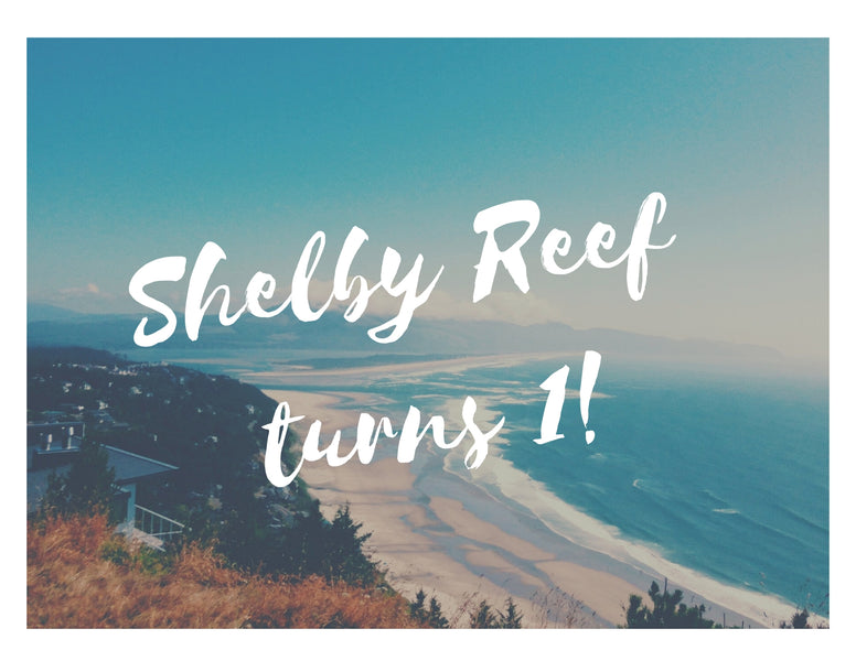 Shelby Reef celebrates our One Year Anniversary! 2019 Wrap Up & Look Ahead to 2020!!