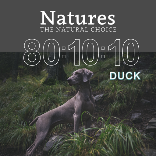 80:10:10 - Duck - Natures Trade