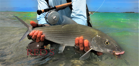 the 12 best bonefish flies