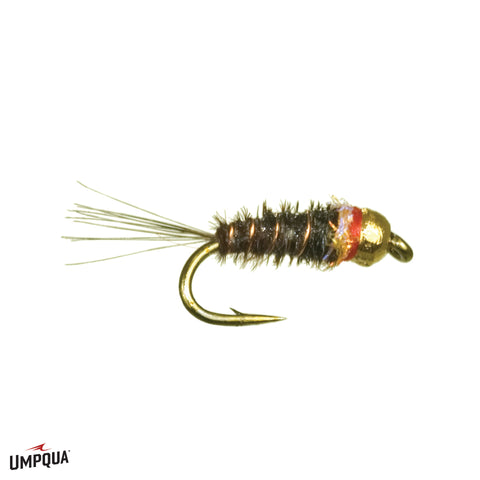 Frenchie Nymph // Egan's by Umpqua