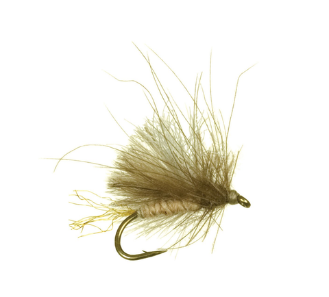 Corn-Fed Caddis CDC by Umpqua