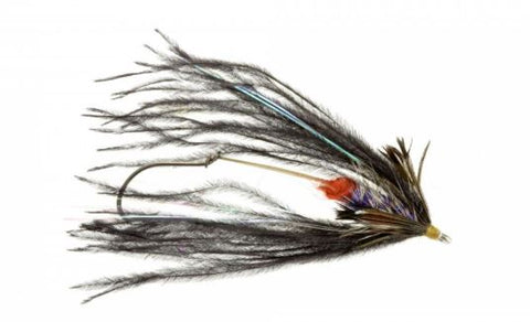 Fish Taco - Steelhead Fly by Catch