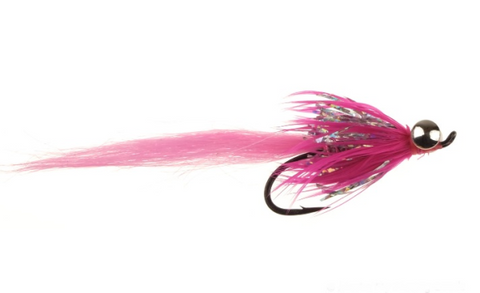 Hot Shot Comet by Umpqua // Fly for Salmon