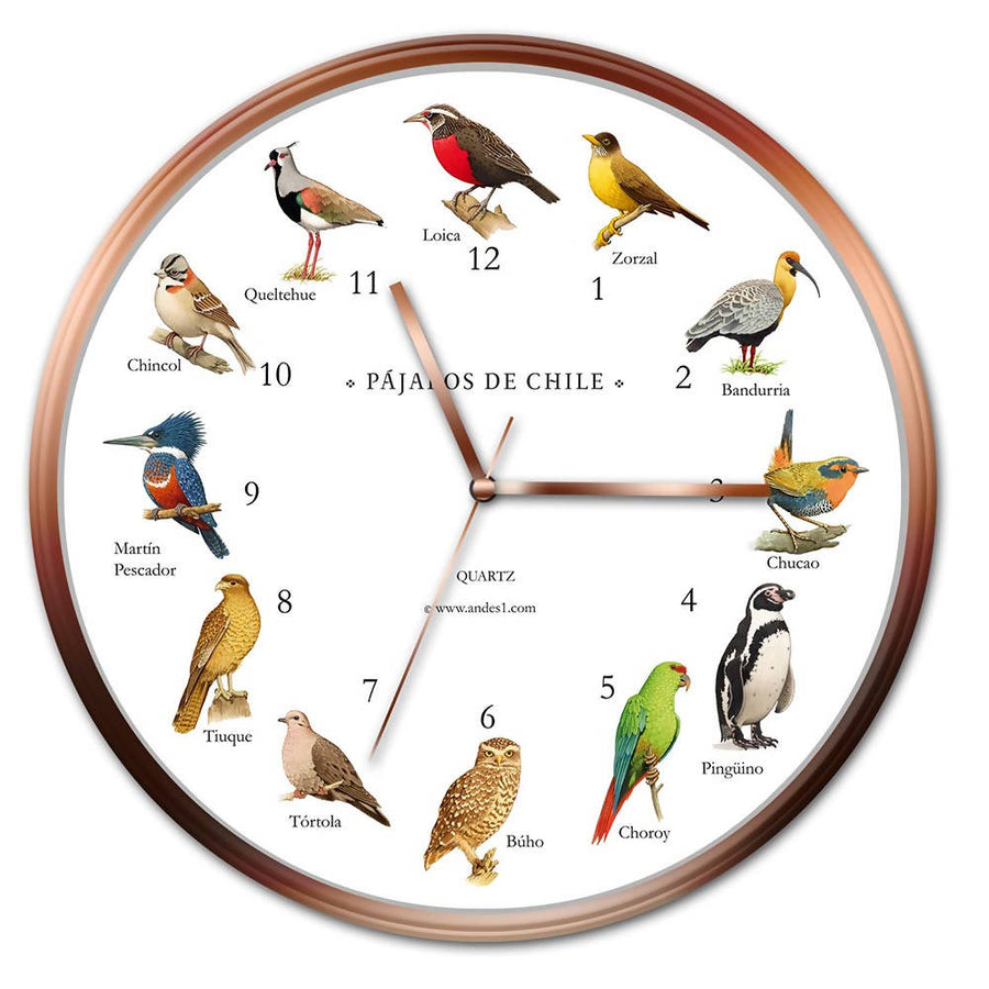 Reloj de Pared Pájaros de Chile