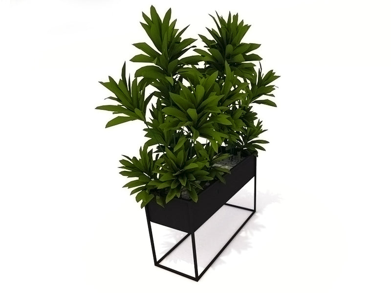 LINART Wide Planter