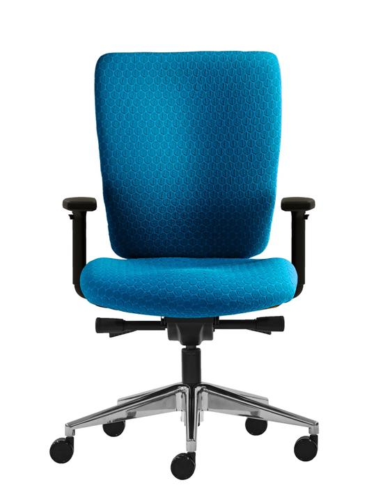 Linear Manager Chair - Task / Desk Chairs