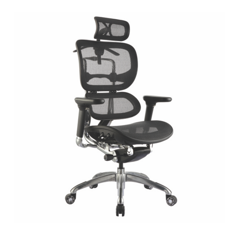 ERGO 1 Chairs