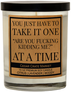 "You Just Have To Take It One ""Are You Fucking Kidding Me?"" At A Time, Kraft Label Scented 100% Soy Candle, Lavender, Citrus, Woody"