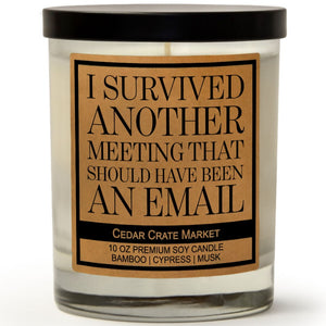 I Survived Another Meeting That Should Have Been An Email | Bamboo Forest | 100% Soy Wax Candle
