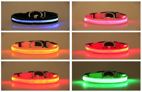 Glowing LED Collar