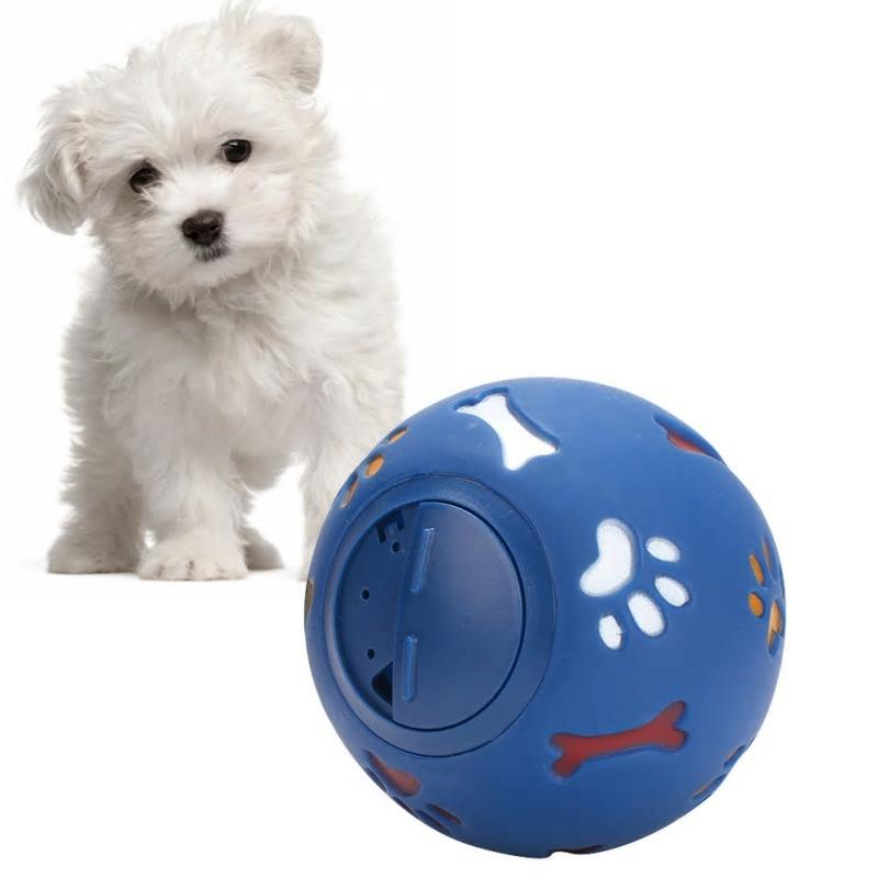 Rubber Ball & Treat Dispenser