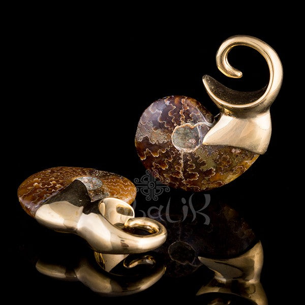 Brass Ear Weights gold ammonite