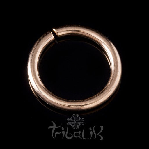 Stainless Steel Rose Gold PVD Seamless Ring