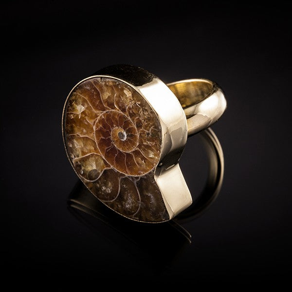 Ammonite brass ring