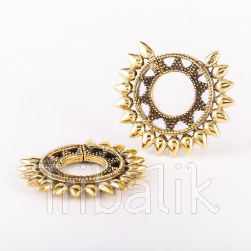 Le Roi - Brass Spikes Hooped Ear Weights