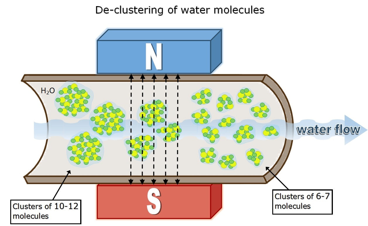 How Magnets decluster water