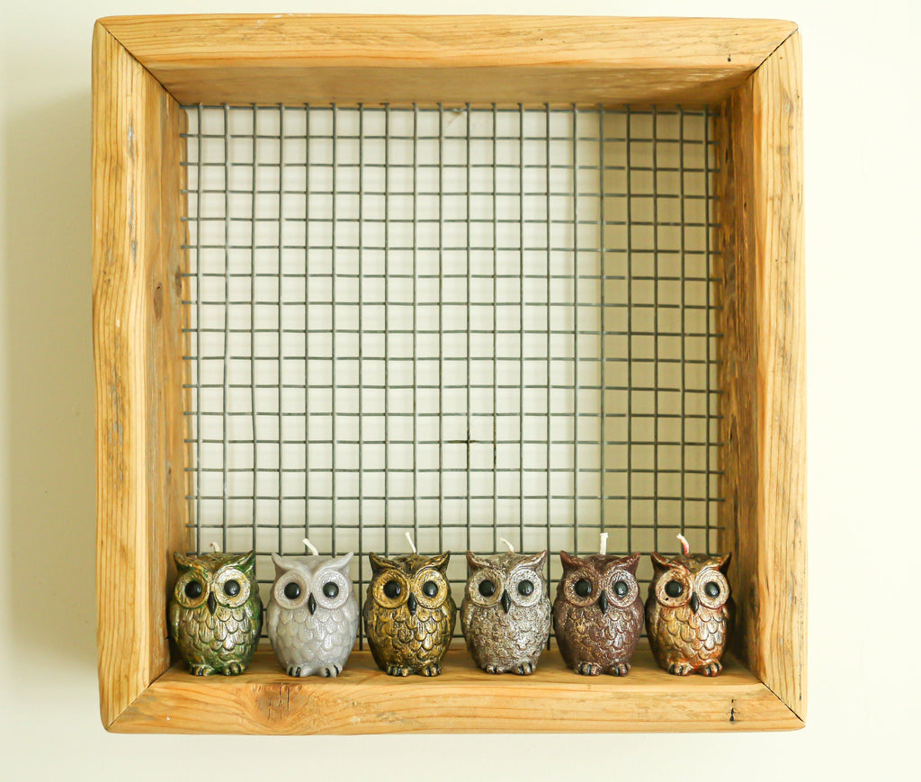 Candle - Luxury Owl Candles- Set Of Six