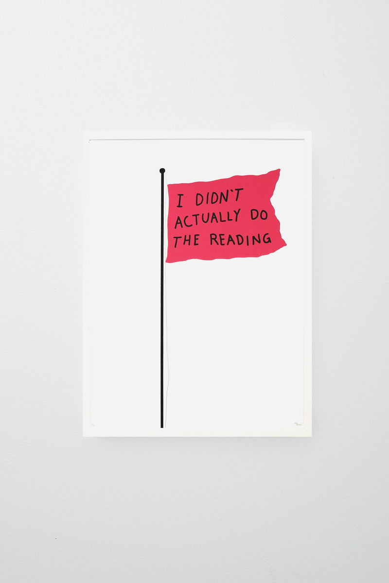Coral flag reads 'I DIDN'T ACTUALLY DO THE READING' in black text, framed.