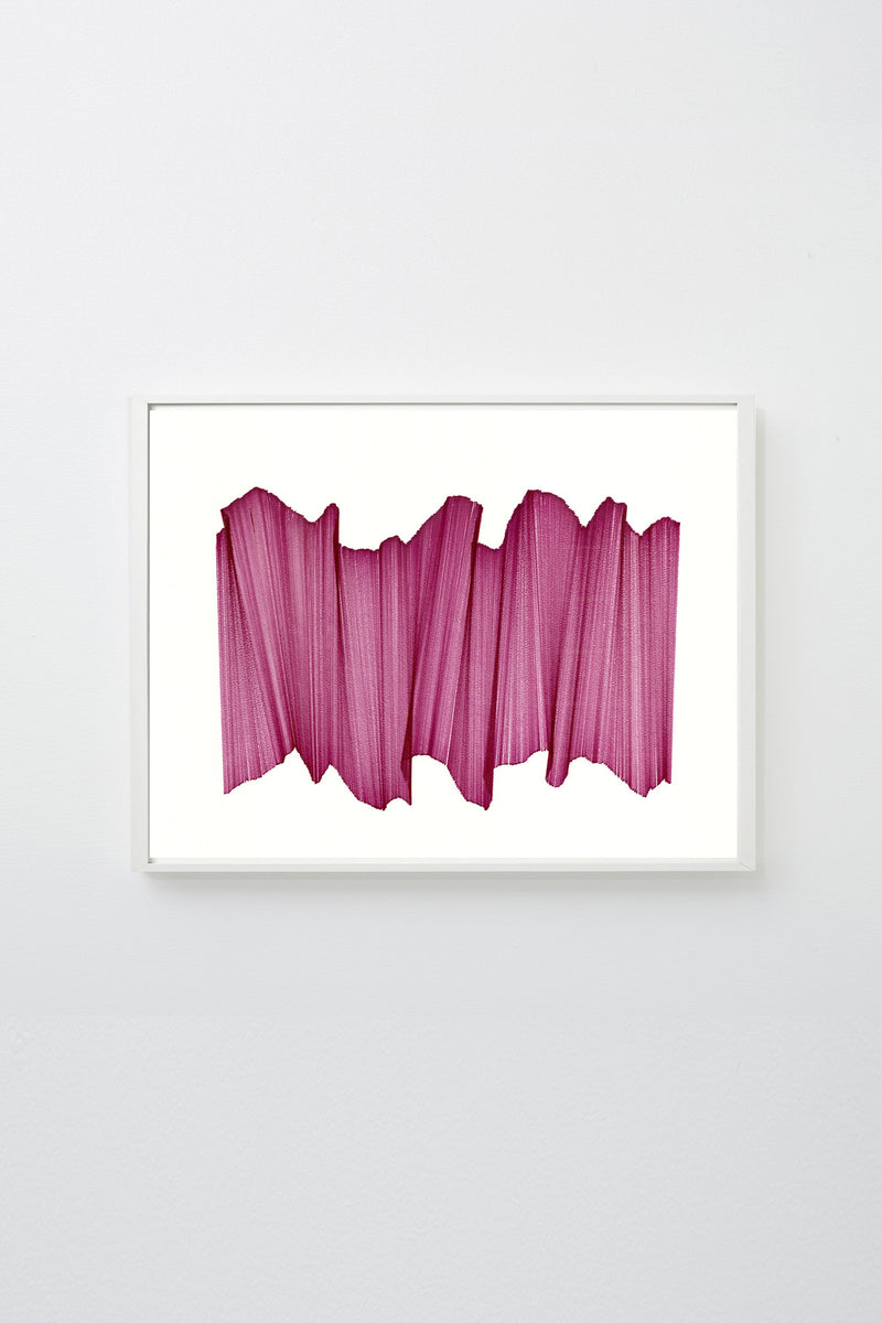 """Migration 20"" (Pink lines intersecting on white paper, appearing to float), framed."
