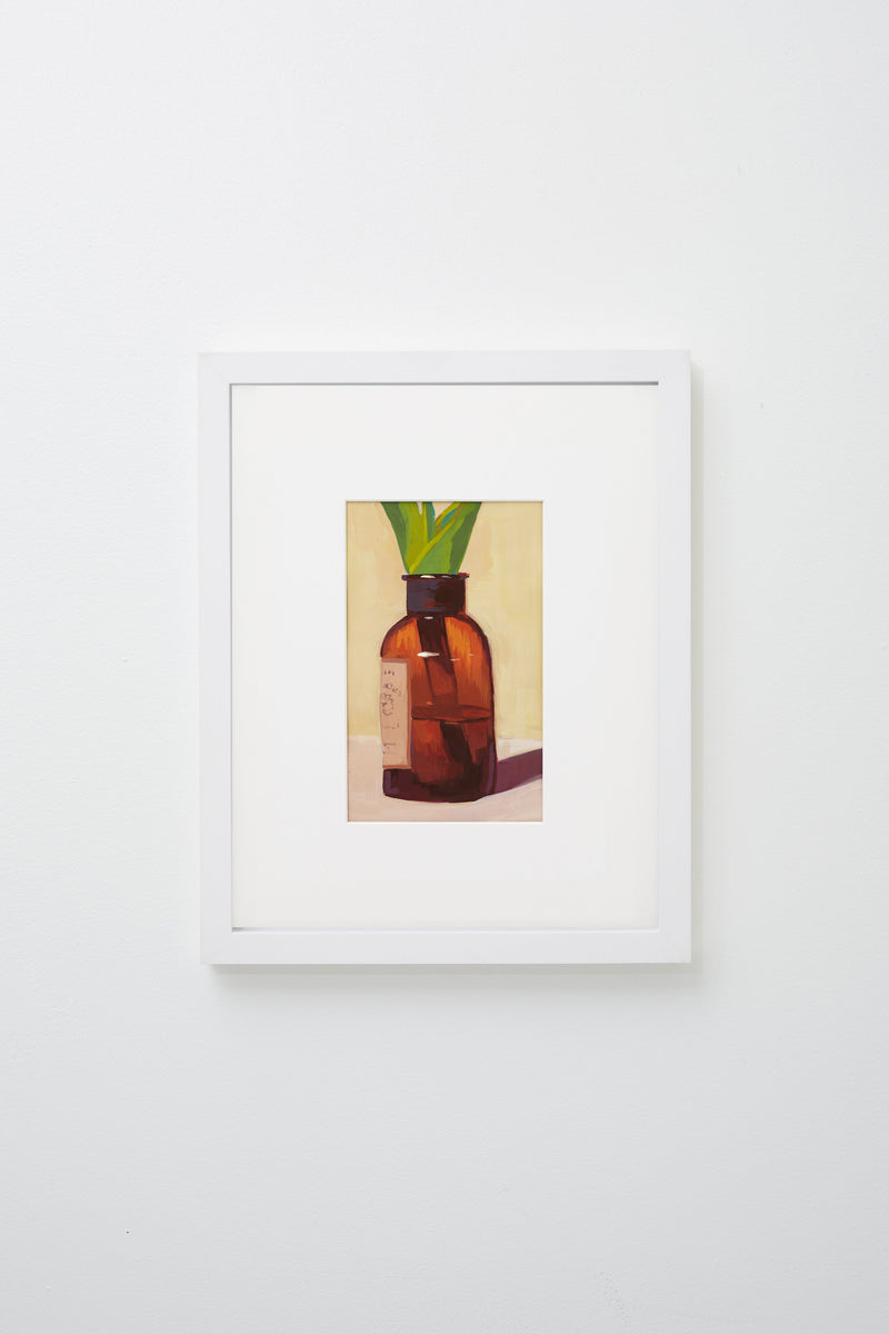 """Red"" (Green plant in transparent red bottle with liquid), framed."