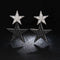 Star AAA+ CZ Crystal Drop Earrings - 2 Colors - [neshe.in]