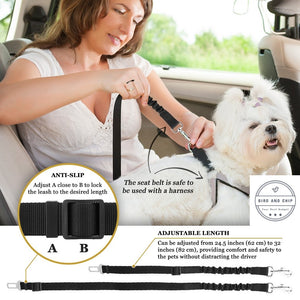 Elastic Dog Safety Belt