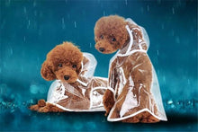 Pet Raincoat (50% OFF)