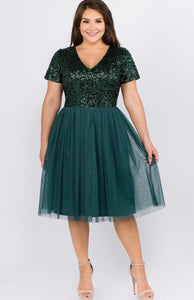 Plus Sequin Tulle Dress