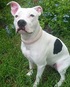 Double Strand Pink Pearl Collar