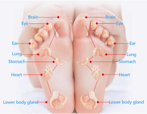 Magnetic Acupressure Foot Massaging Insoles