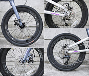 "JAVA NEO 2 20"" Disc Brake Folding Bike"