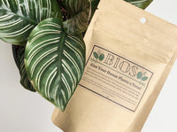 BIOS House Plant Food