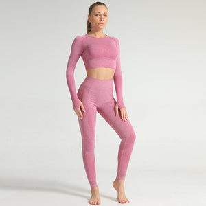 Bikswim Vital Seamless Yoga Set Gym Clothing Fitness Leggings+Cropped Shirts Sport Suit Long Sleeve Active Wear
