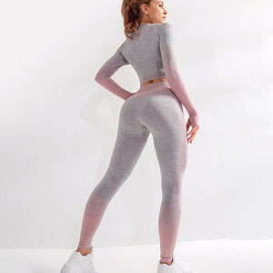 2 piece long sleeve workout set women yoga GYM active wear set fitness