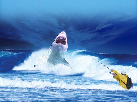 Shark-Ocean-Fisherman-Sea-Fishing