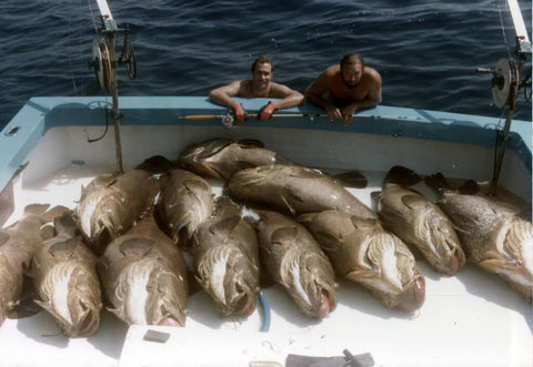 catch-goliath-grouper