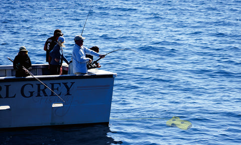 deep-sea-fishing-tours