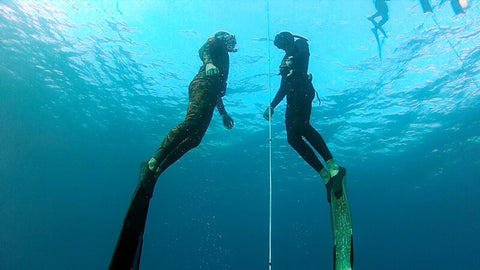 how-to-learn-freediving